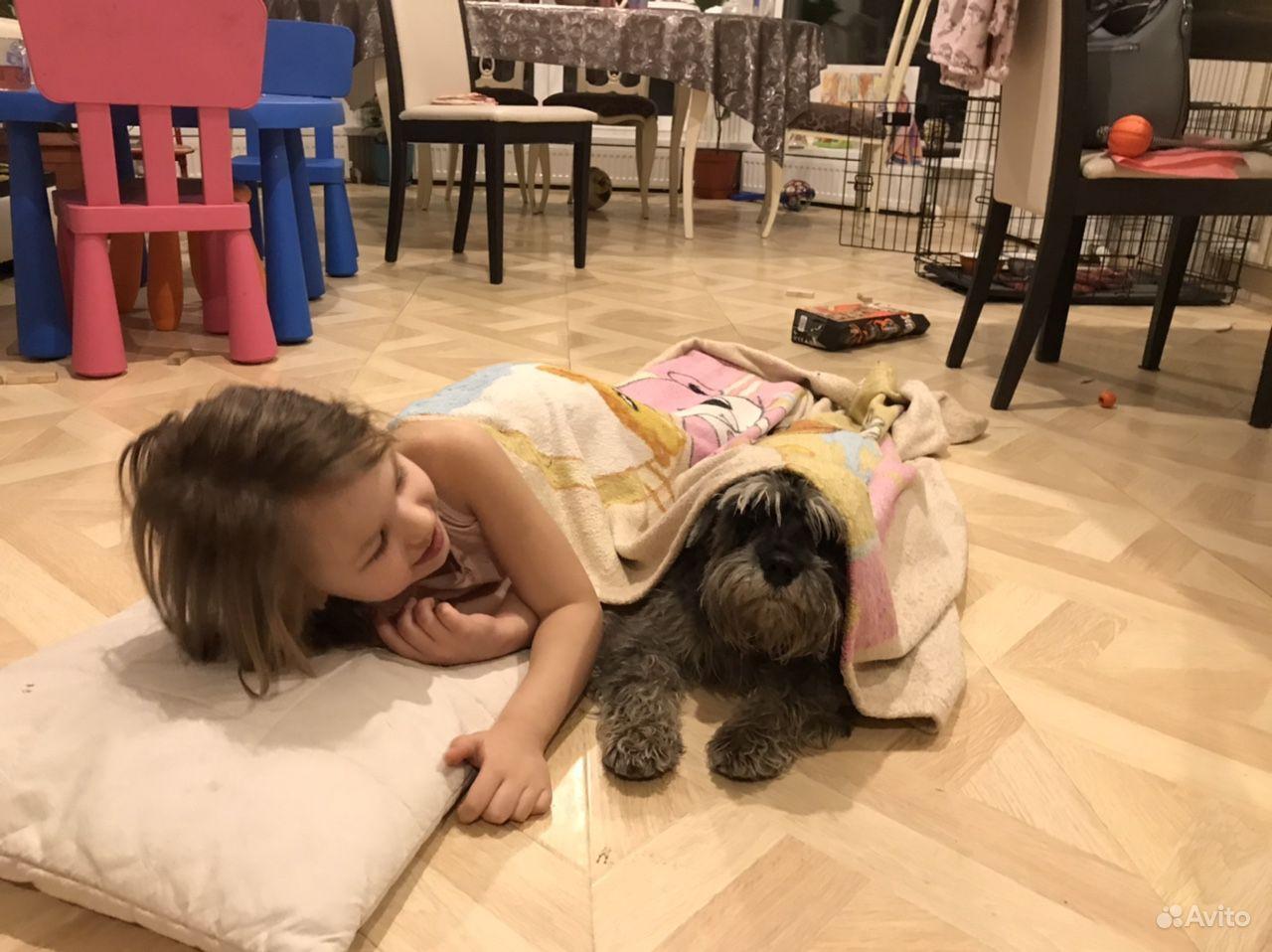Зоогостиница Вырица (передержка собак) купить на Вуёк.ру - фотография № 8