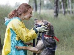 Лучший друг ищет доброго хозяина