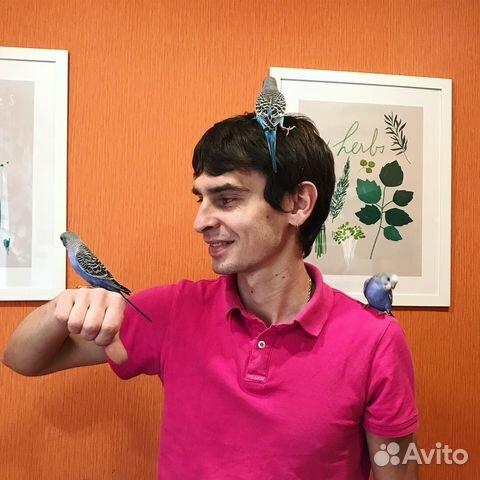 хоть сколько кальций для волнистого попугая хотите заказать Радиаторы