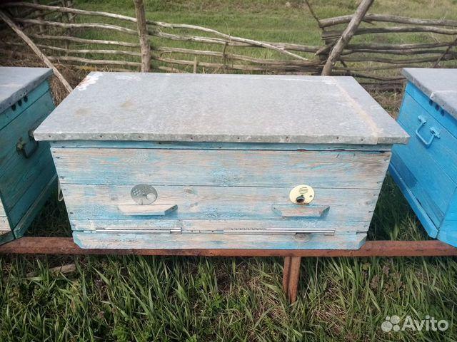Hives-solarium
