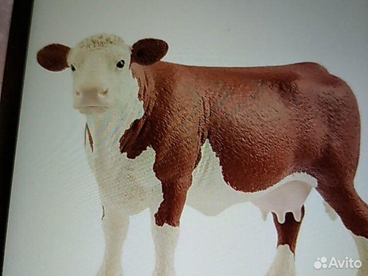 Корова  89232326163 купить 1