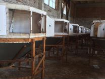 Клетки-фермы для разведения кроликов